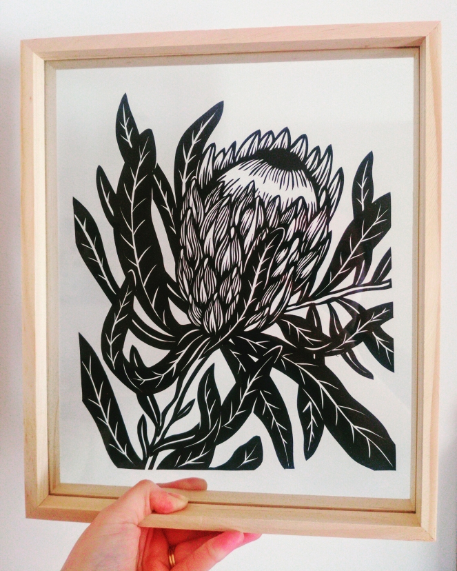 Framed Original Pink Ice Protea
